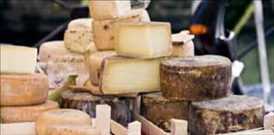 Cheese Making Culture market
